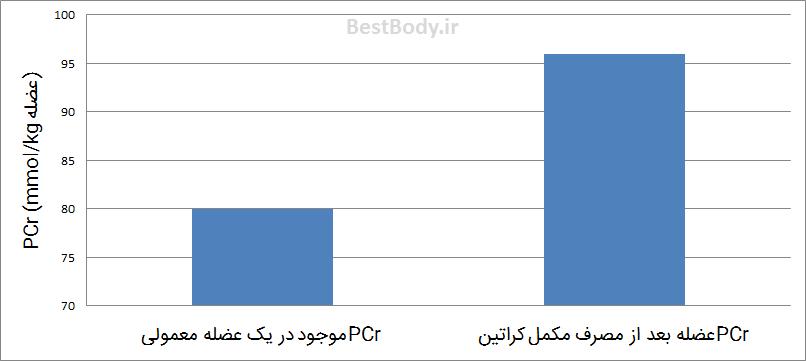 نمودار ۱: این نمودار مقدار متوسط تغییر PCr موجود در عضله را بعد از مصرف کراتین نمایش می دهد
