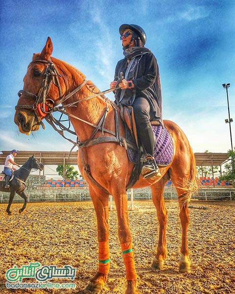 اسب سواری شیراز